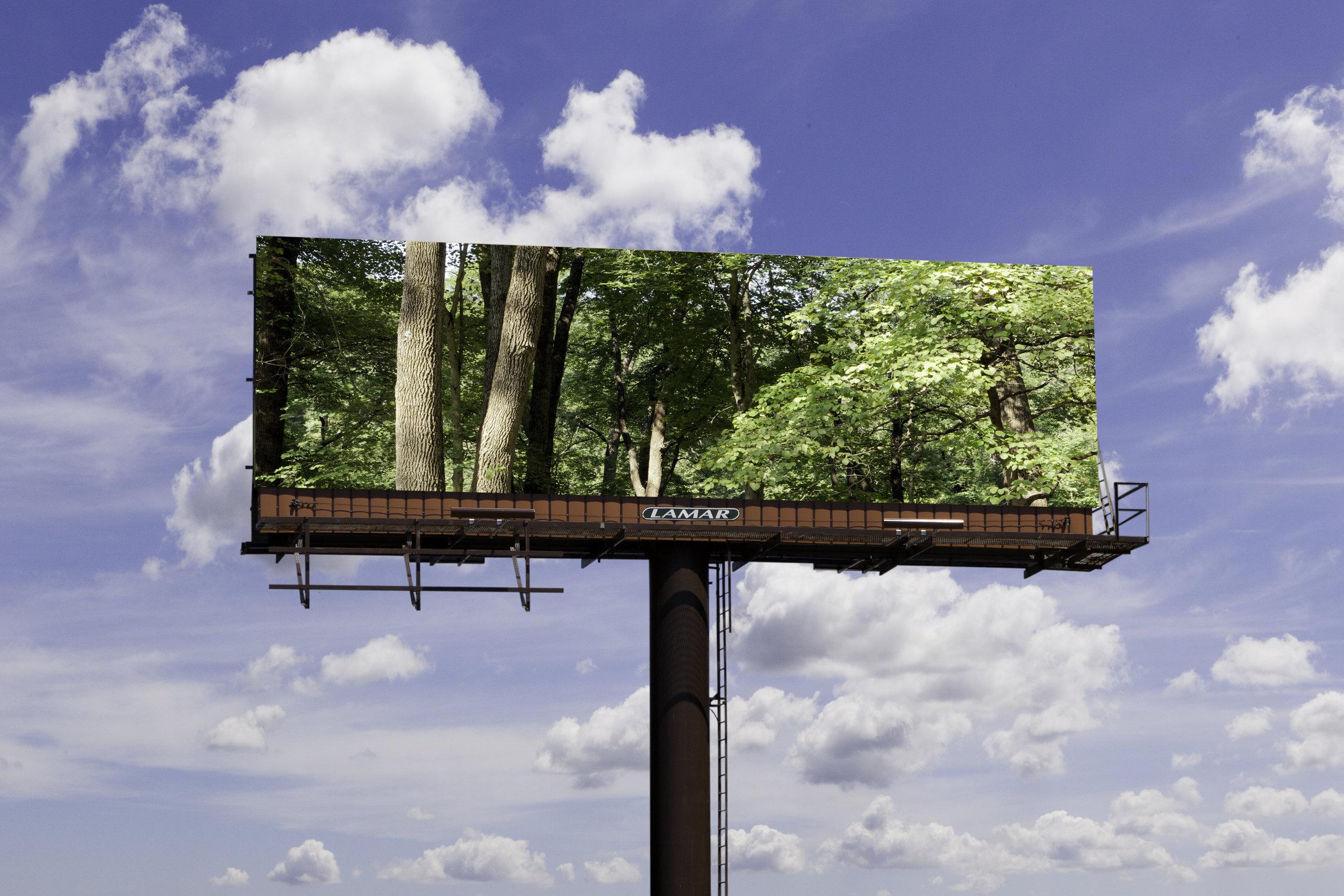 Billboard, 2018, archival pigment print
