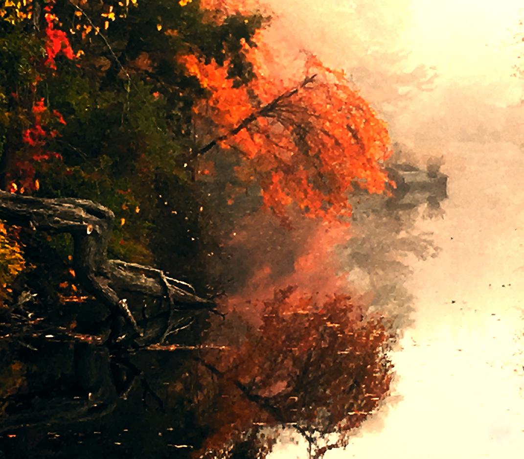 fall website.jpg