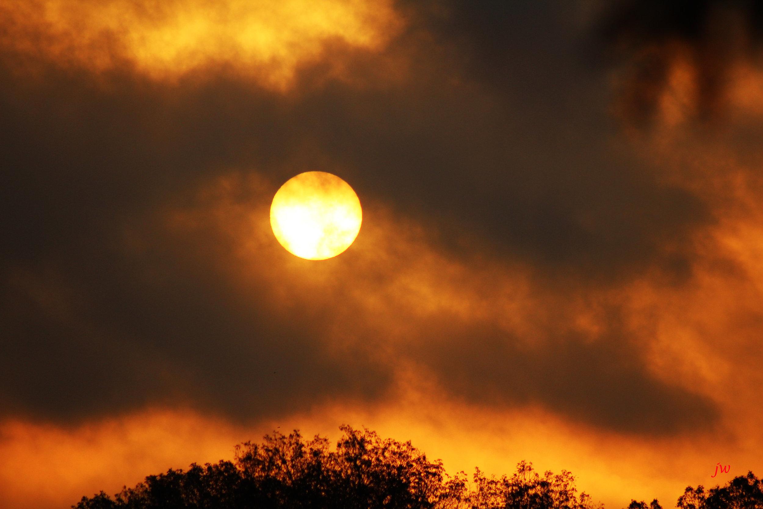 sunrise9.jpg