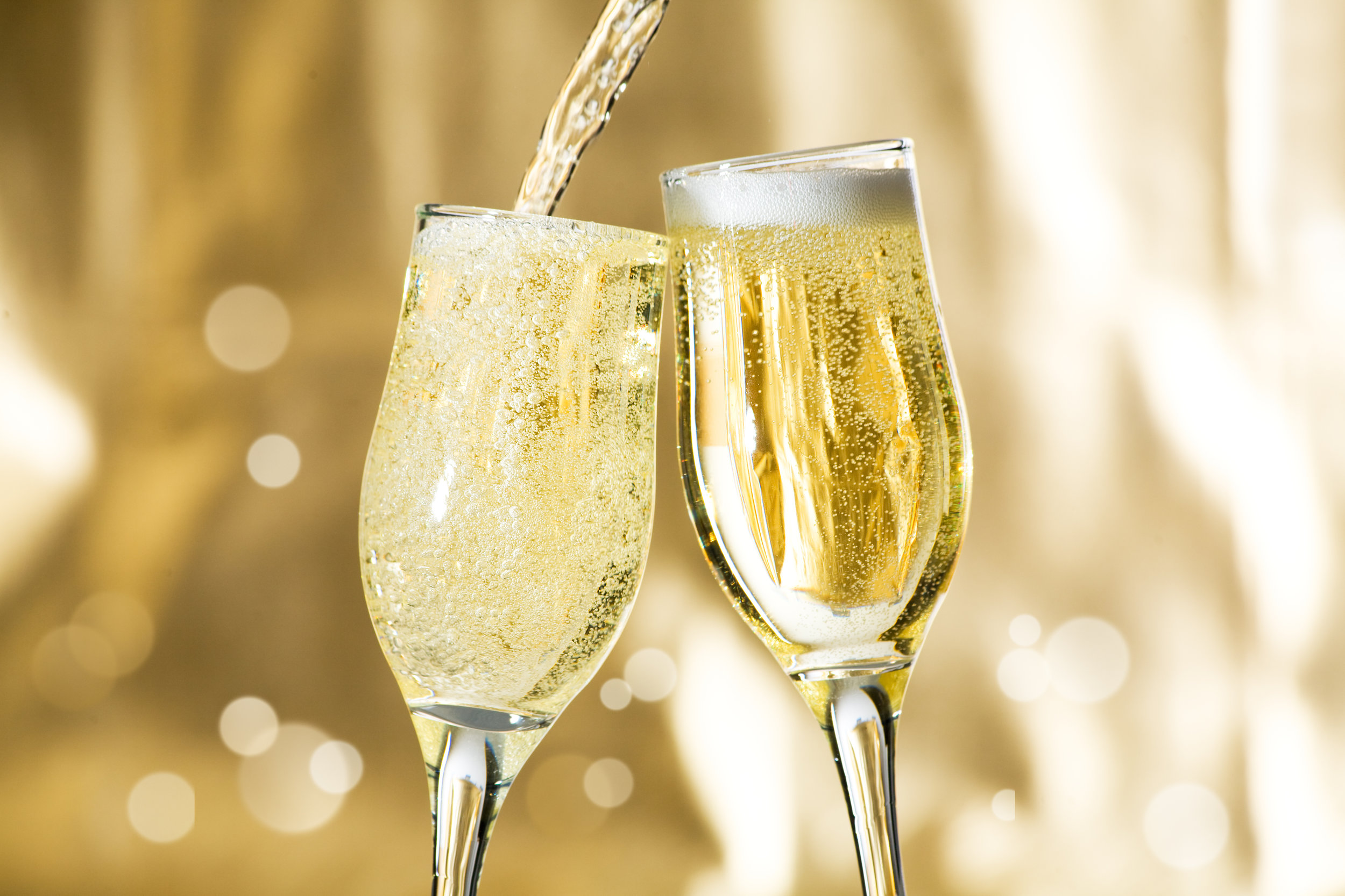 Everyone Wins! Enjoy bubbly champagne in your very own Stokes Nature Center wine glass and be entered to win fabulous prizes.  Four rounds of prizes worth $700 - $1800
