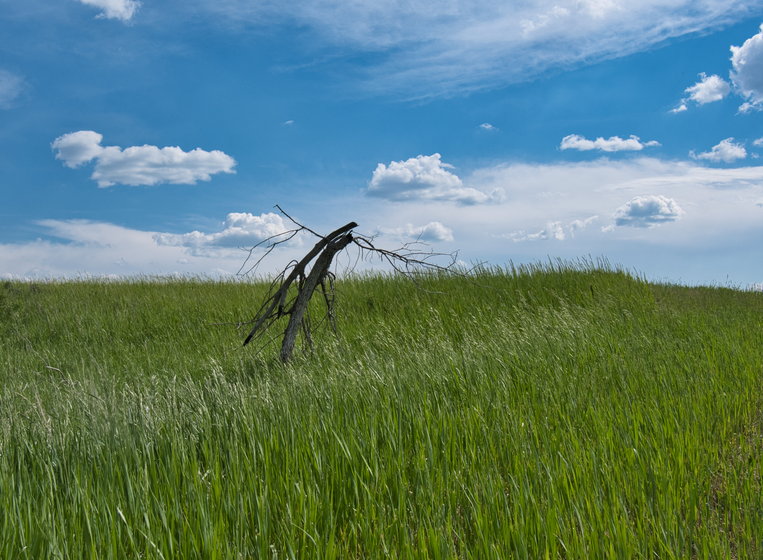 Along the Knife River and Missouri River confluence - beautiful grasslands