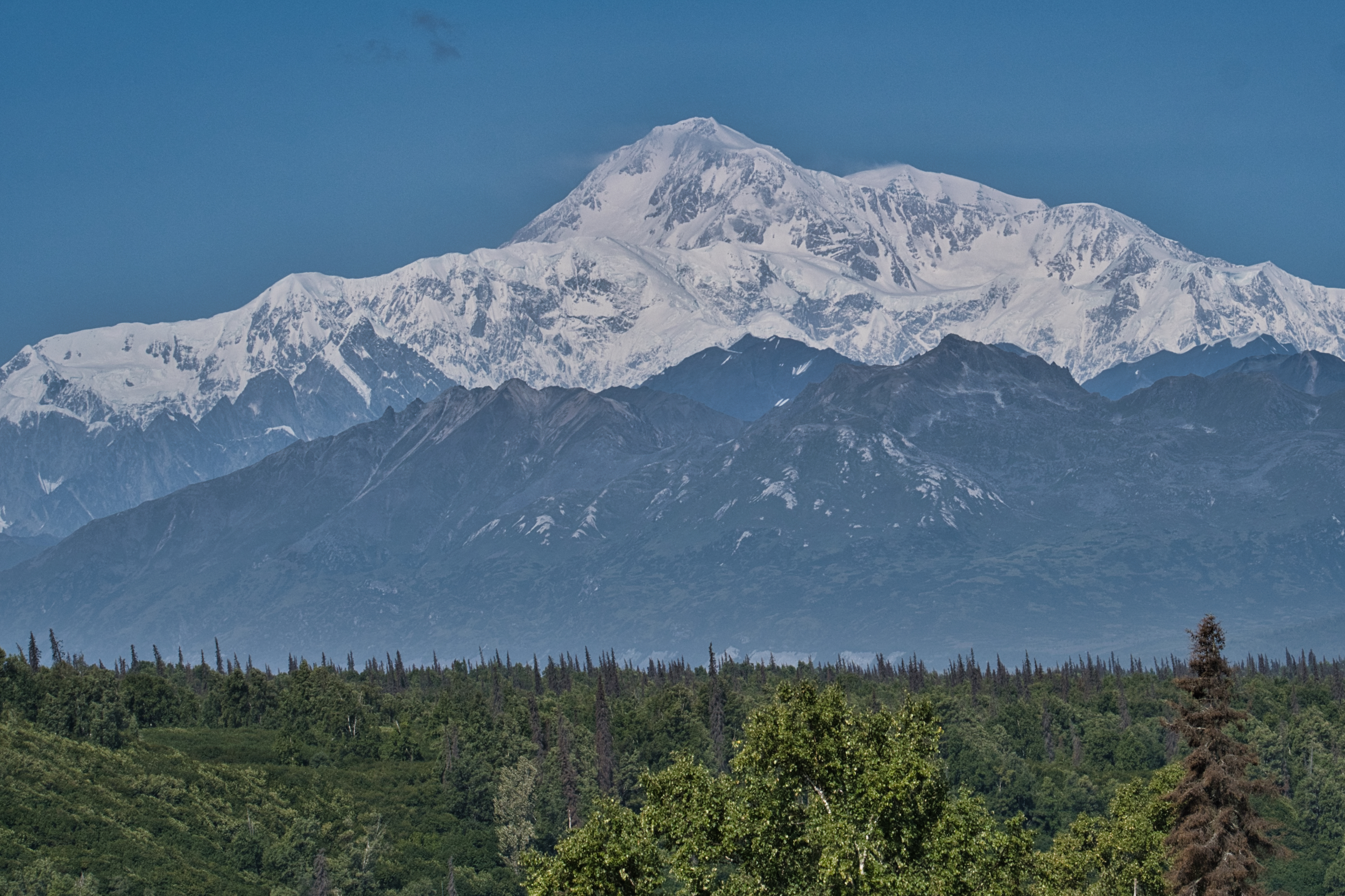 Our first full view of Denali but it gets better!