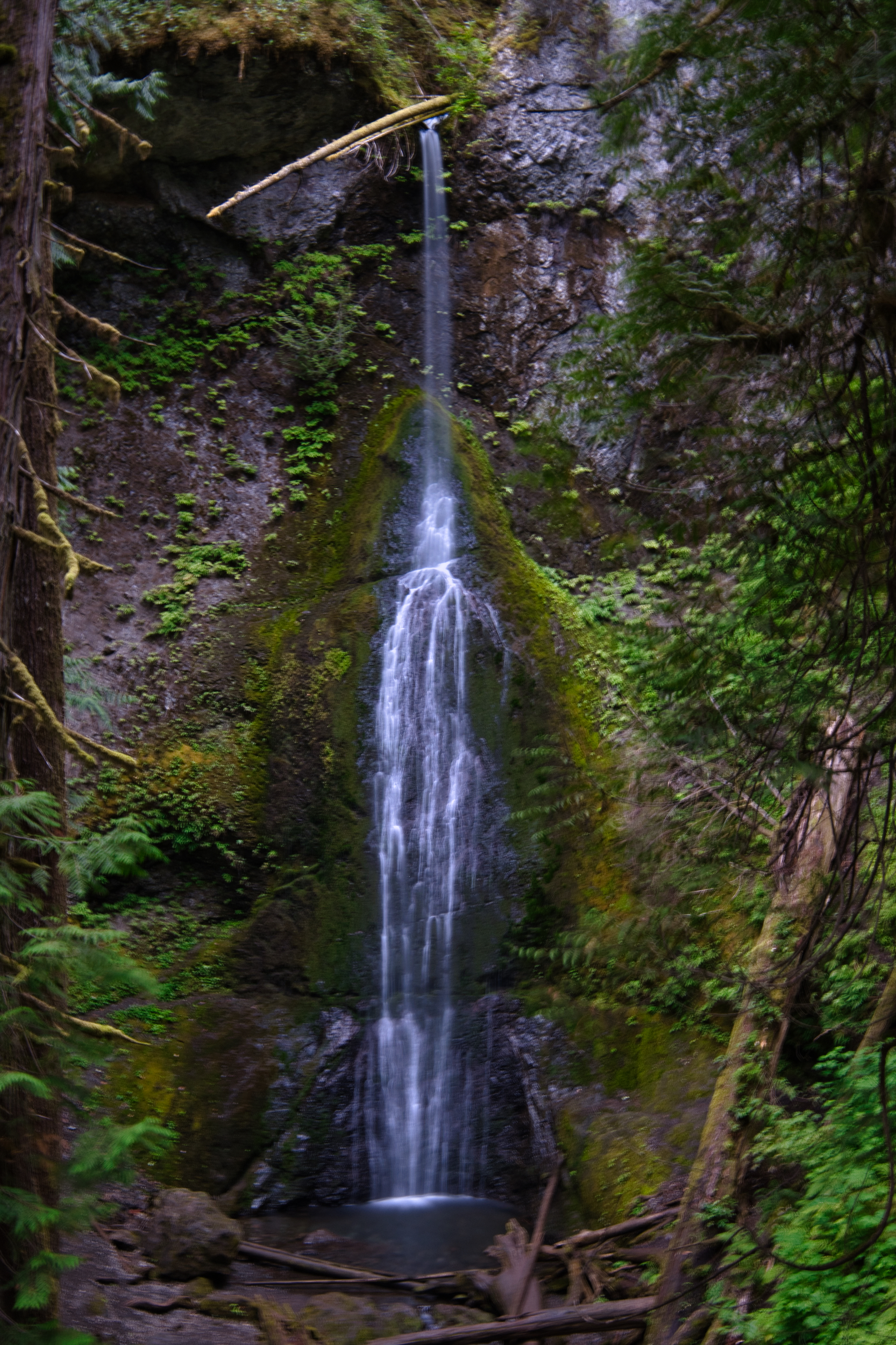 Marymere falls is a 90 foot graceful display.