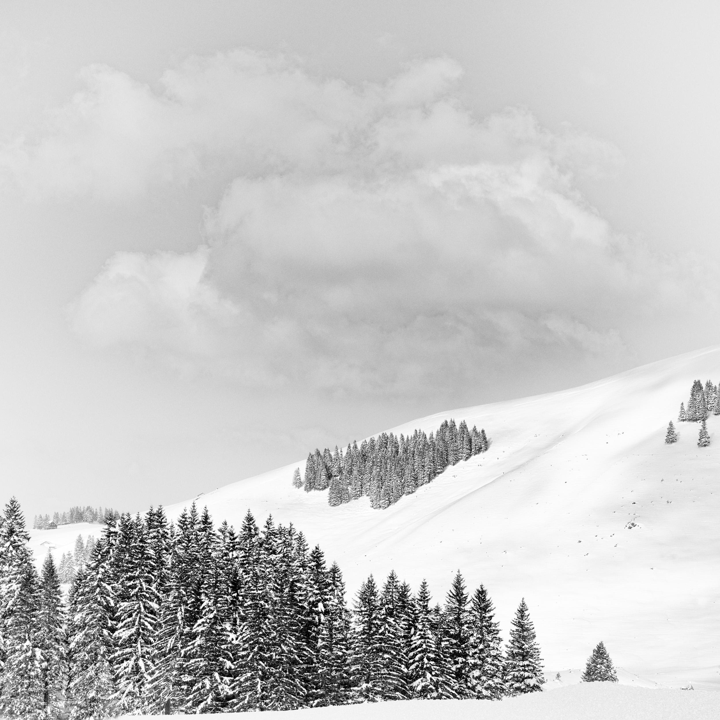 Swiss Alps # 5  Appenzell Alps