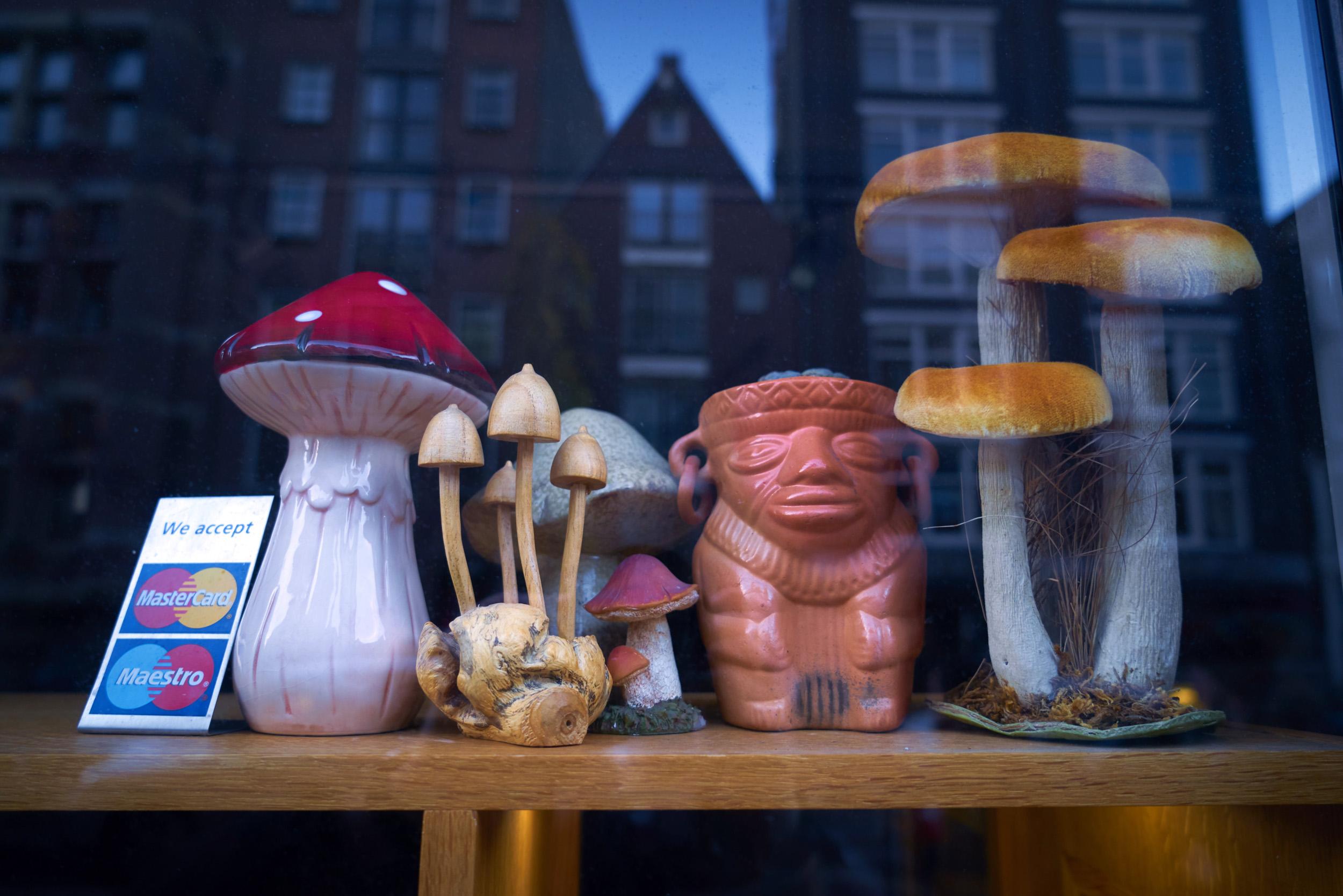 Amsterdam Mushrooms