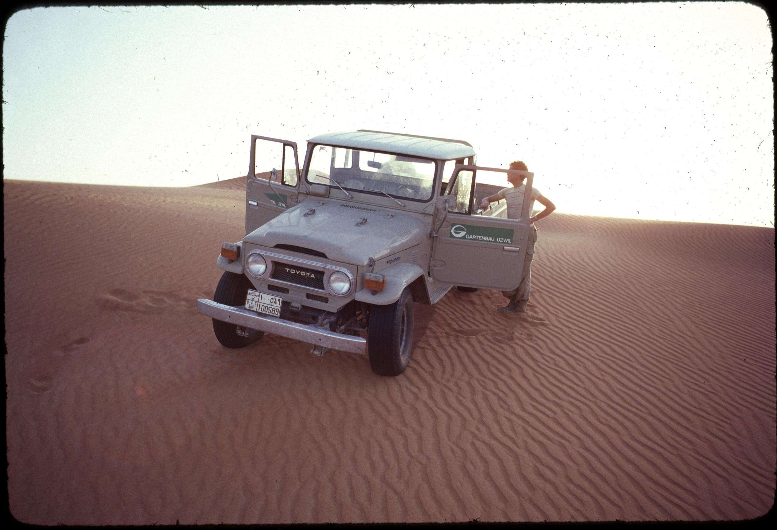 Al Ain Desert 3