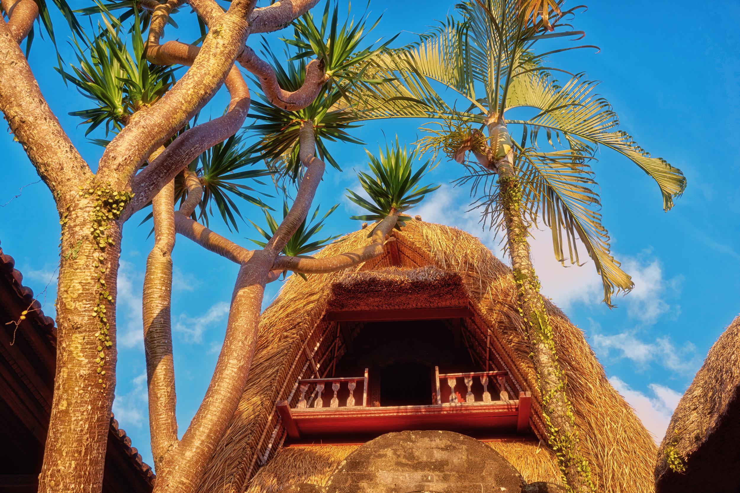 BaliHouse.jpg