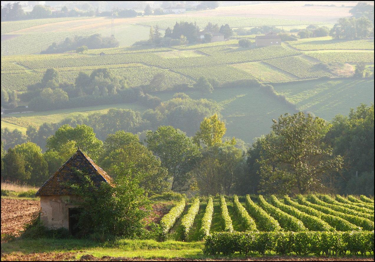 french countryside.jpg