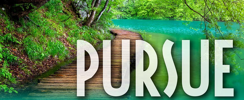 Pursue-WMU.png