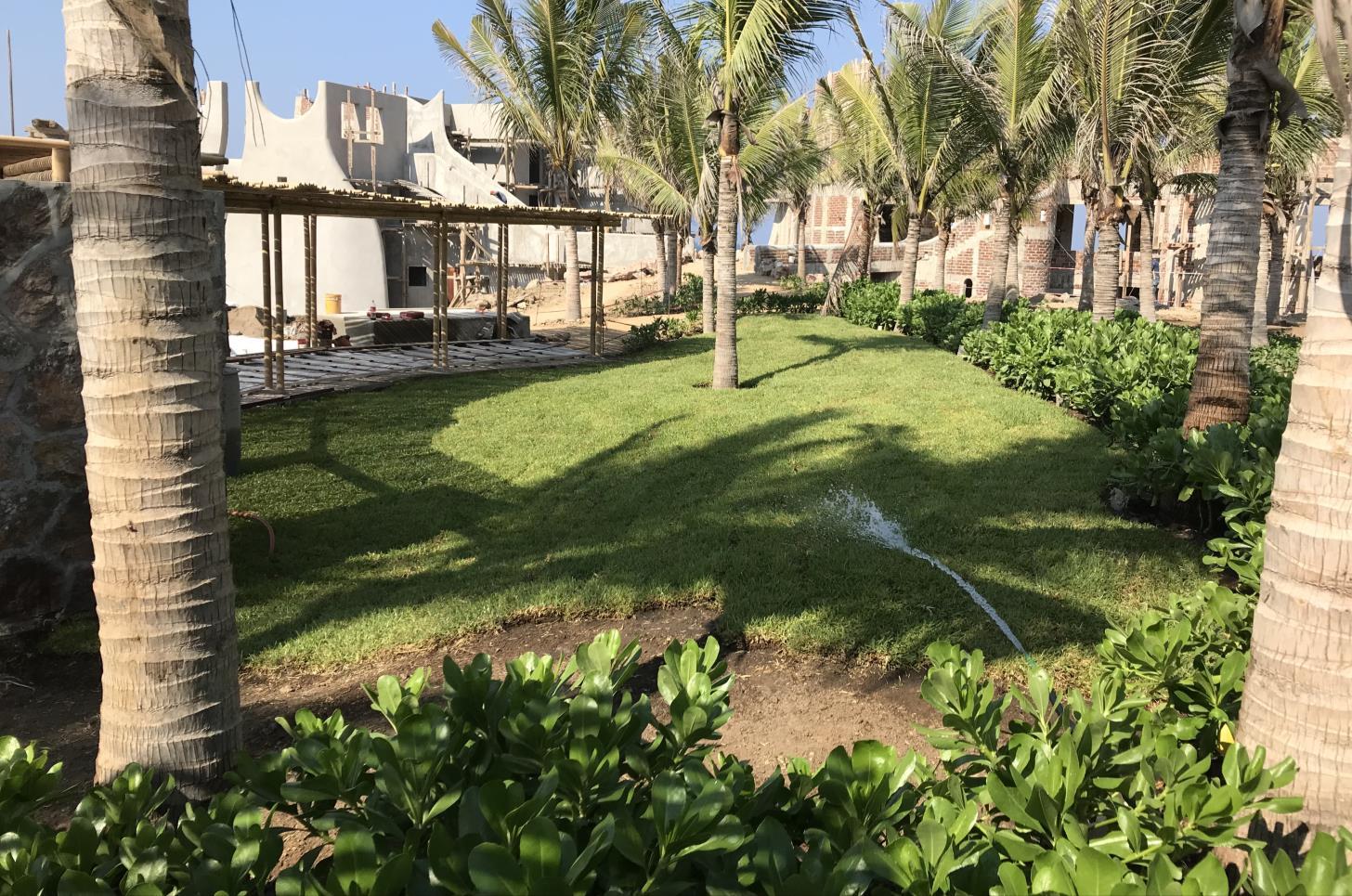 Jardín atras de pergola