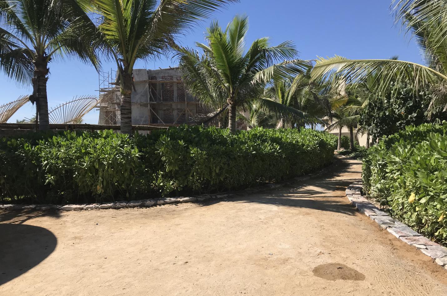 Walkways | Punta Majahua