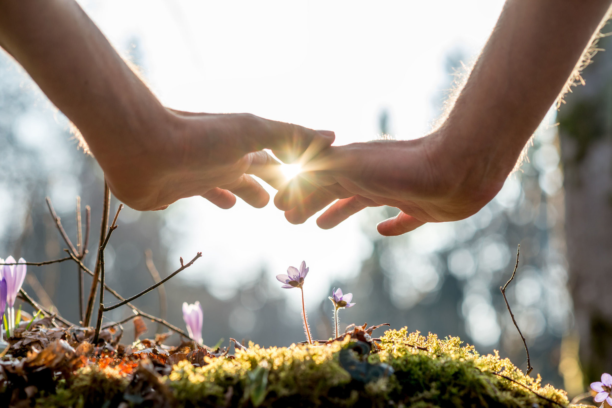 HOLISTIC HEALING - As a medi healer, I've studied many healing forms and blend them together to create a healing energy that flows best for you based on your particular needs and desires. Each session is created just for you.