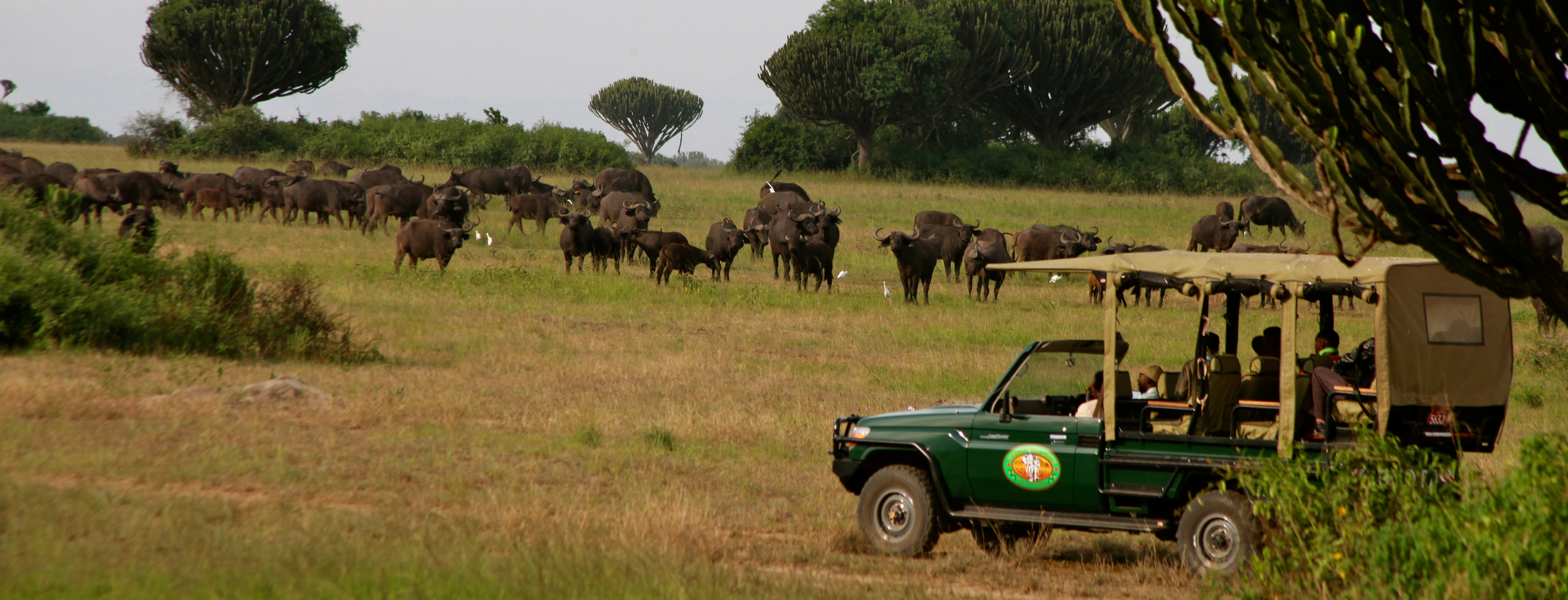 mweya_safari_lodge_safari_drive-hi.jpg