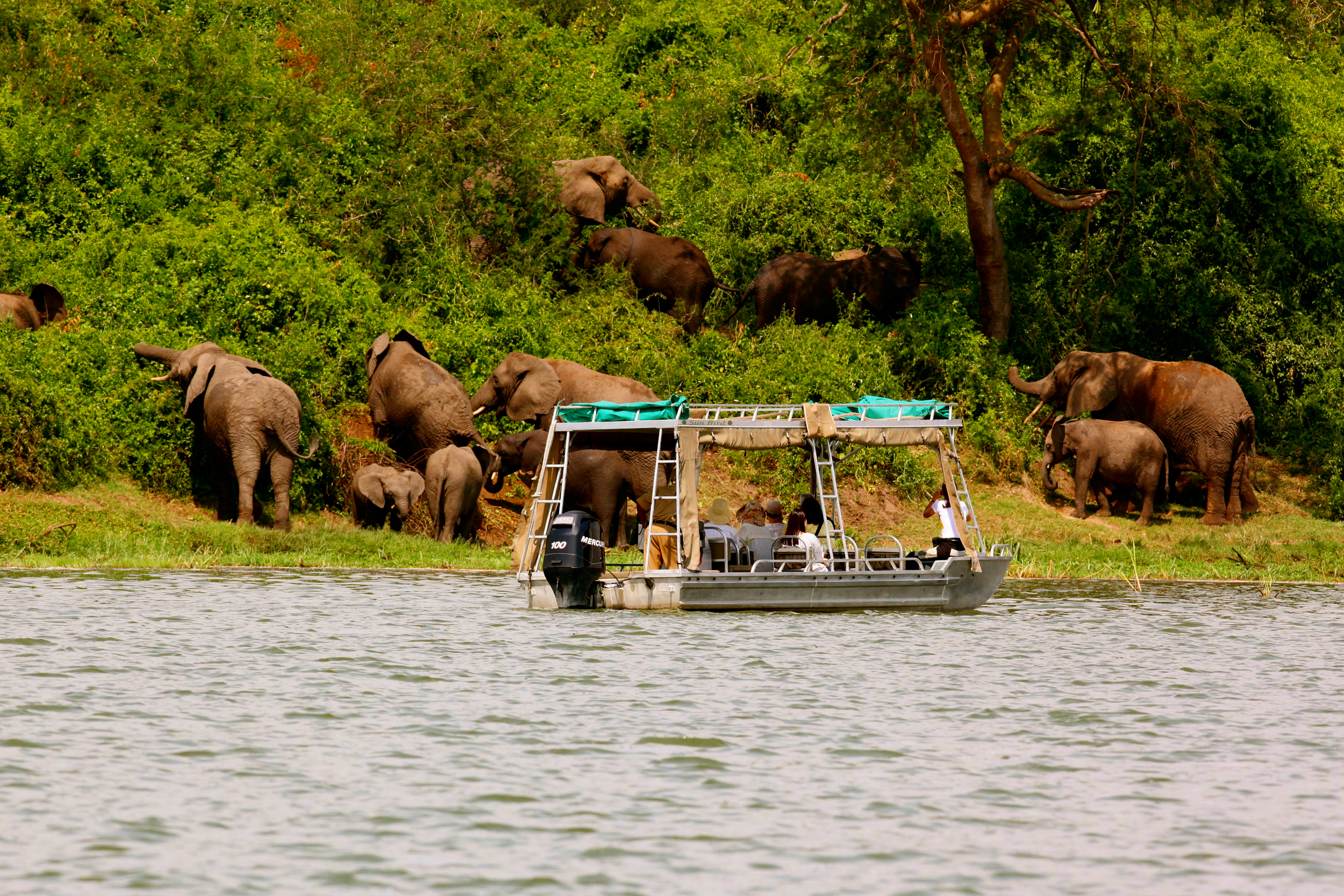 mweya_safari_lodge_water_safari_aboard_the_sunbird-hi.jpg