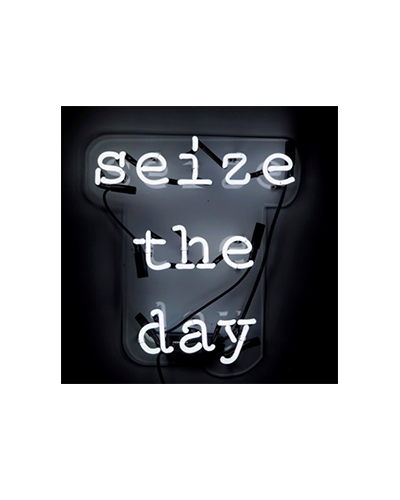 OLIVER GAL  Seize the Day Neon Sign