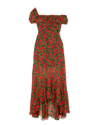 RAQUEL DINIZ  Floral Silk-chiffon Maxi Dress