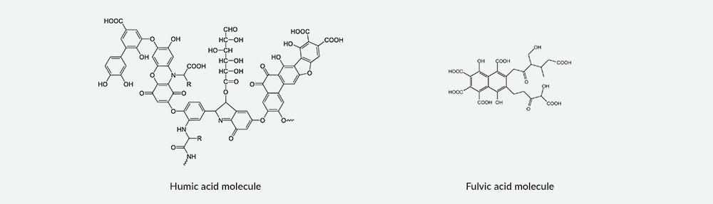 Molecules.jpg