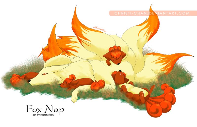 11x17_fox-nap-web.jpg