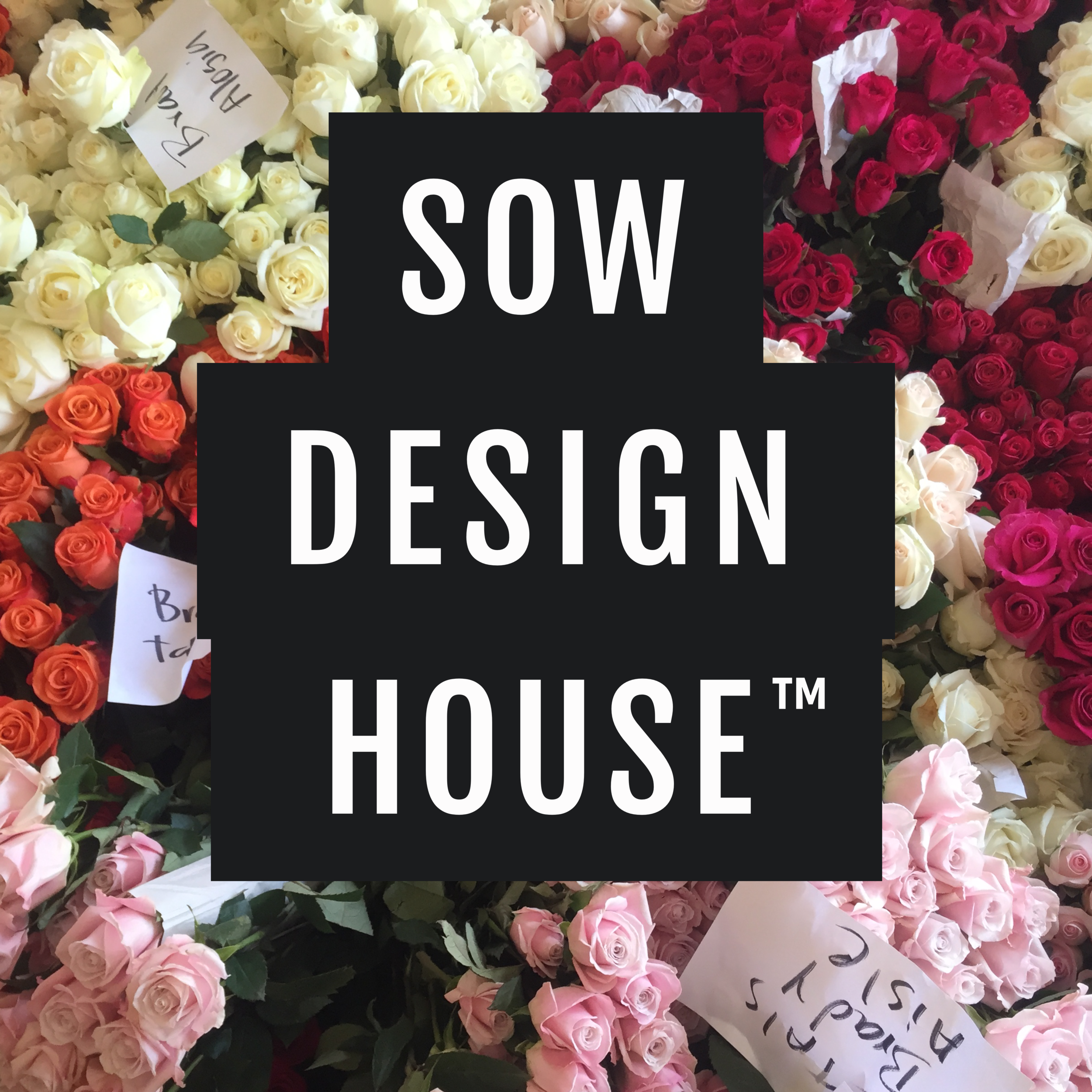 SOW Design House.png