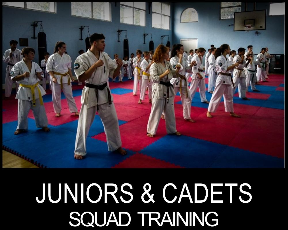 squad training crawley 25th feb 2018-3.jpg