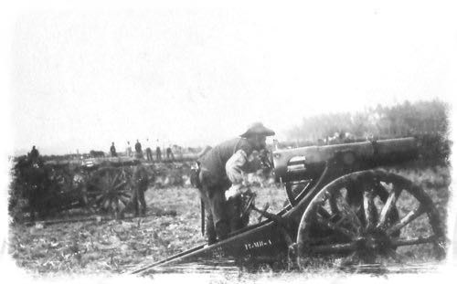 Dutch Canons Firing on the Balinese