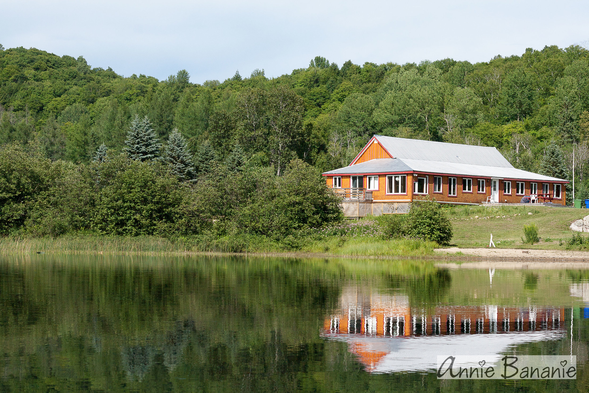 My Studio in the Woods - Come and experience the calm of the woods and the beauty of the lake.