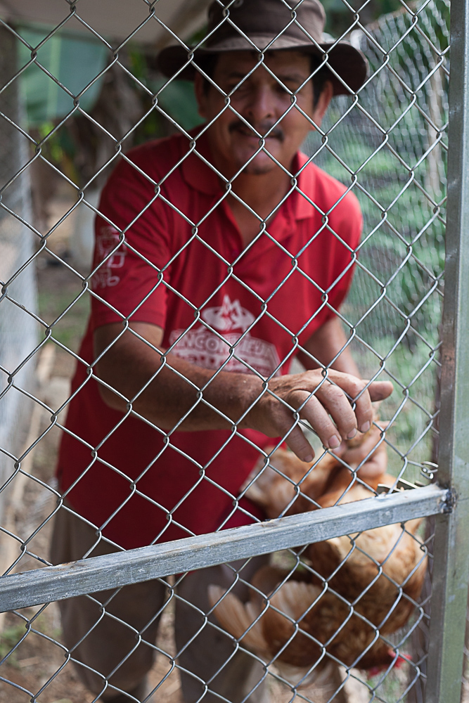 Mr. Silian - Here is a photo of Mr. Silian bringing the chickens into their new home. He was so happy and treated the chickens like his own children.  We slept on their land and in the morning as we lay in our tent, we could here Mr. Silian talking to the chickens.