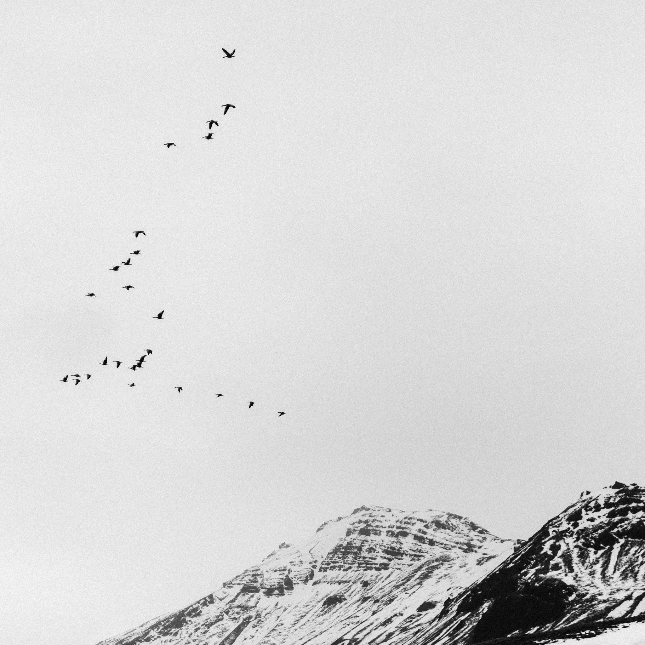 Nikon Iceland-35.jpg