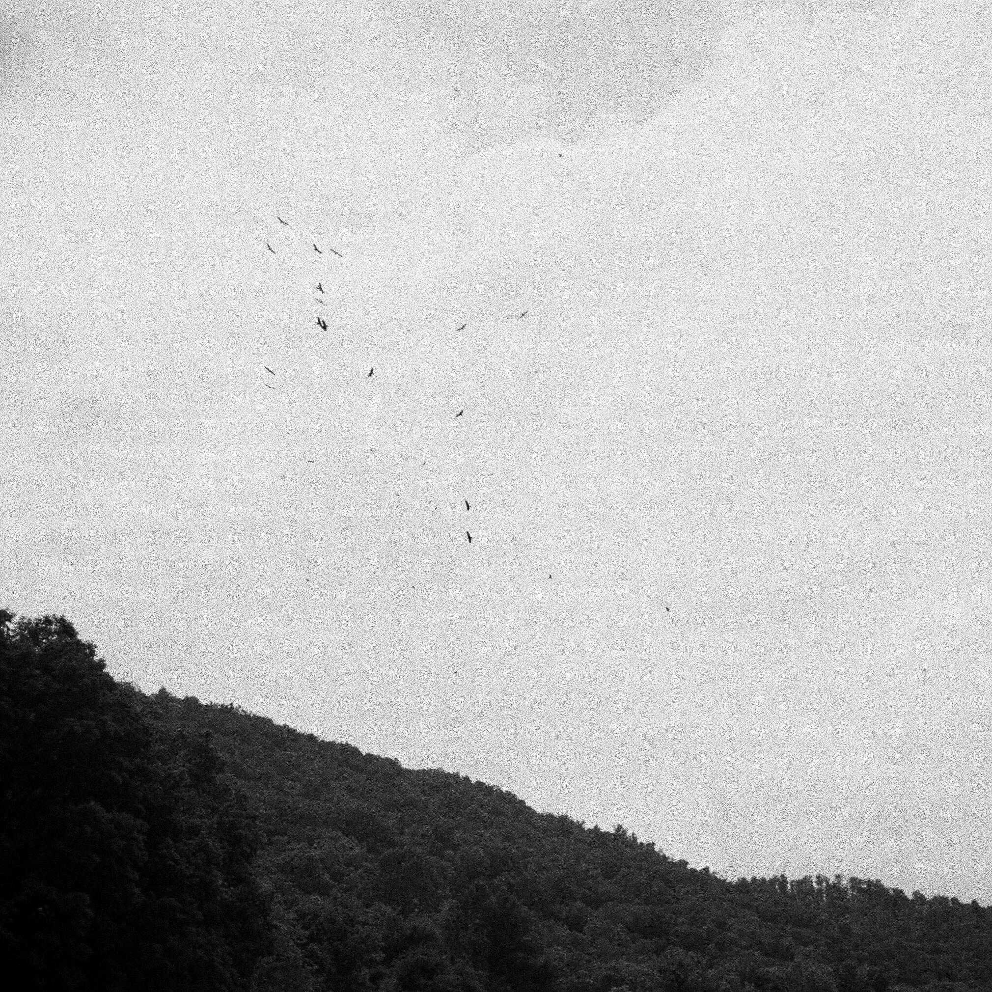 Chattanooga-201.jpg