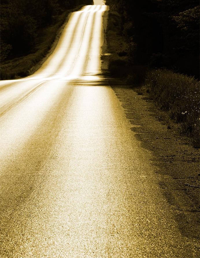 Golden road to work…….