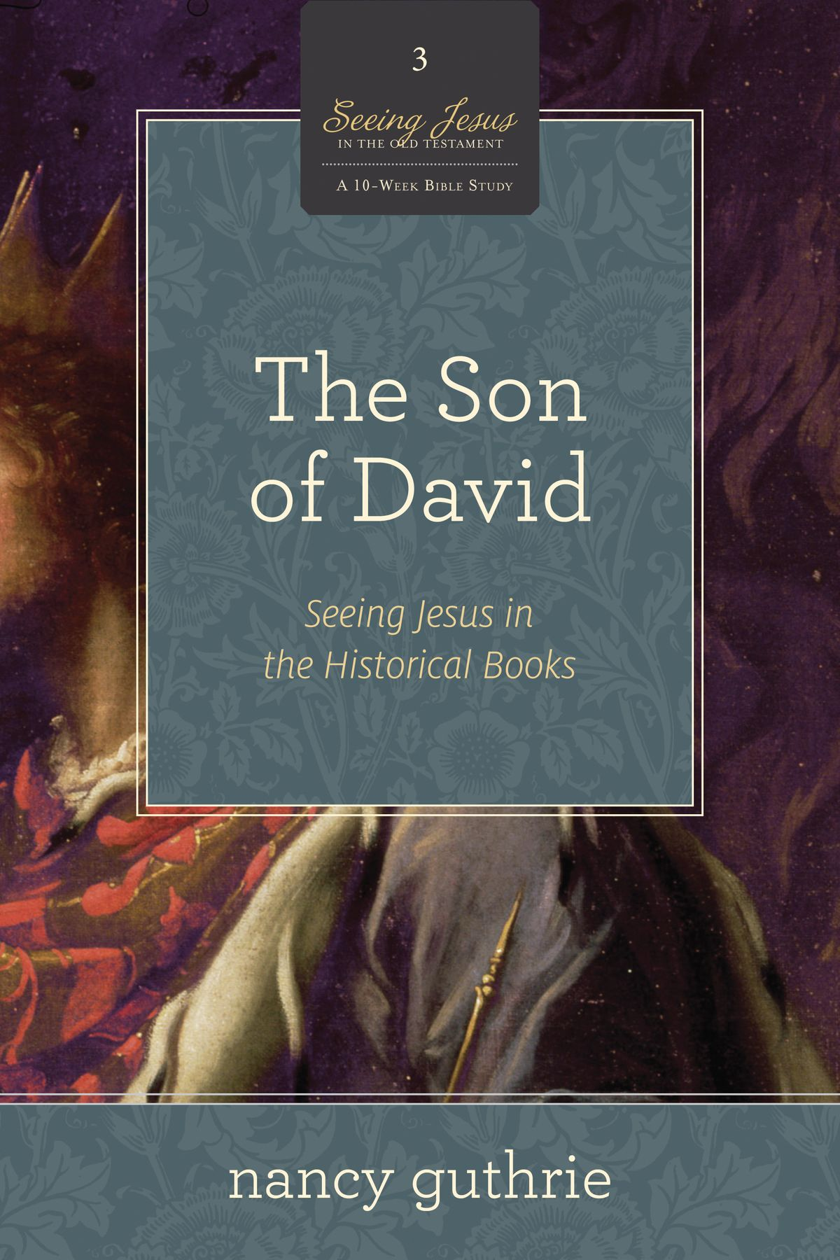 the-son-of-david-a-10-week-bible-study.jpg