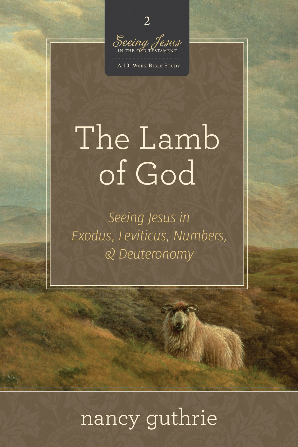 the-lamb-of-god-a-10-week-bible-study-seeing-jesus-in-exodus-leviticus-numbers-and-deuteronomy.jpg