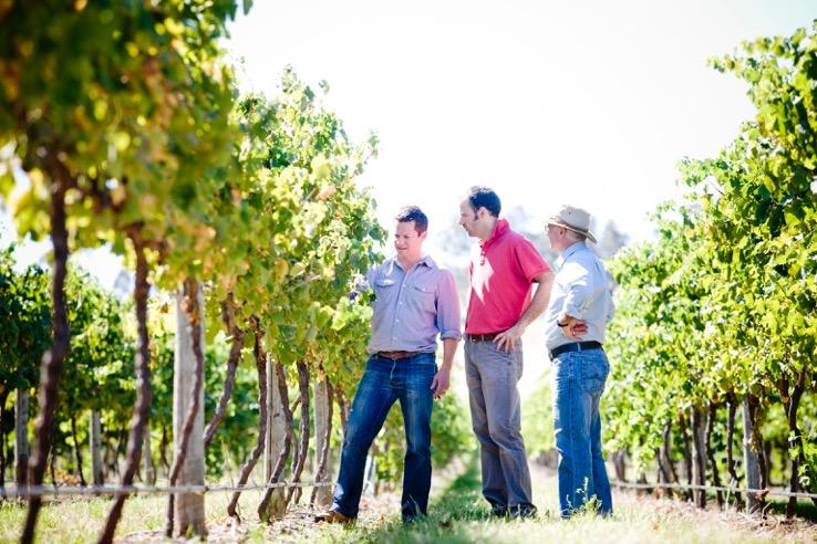 Trio inspecting vineyard 7940.jpeg