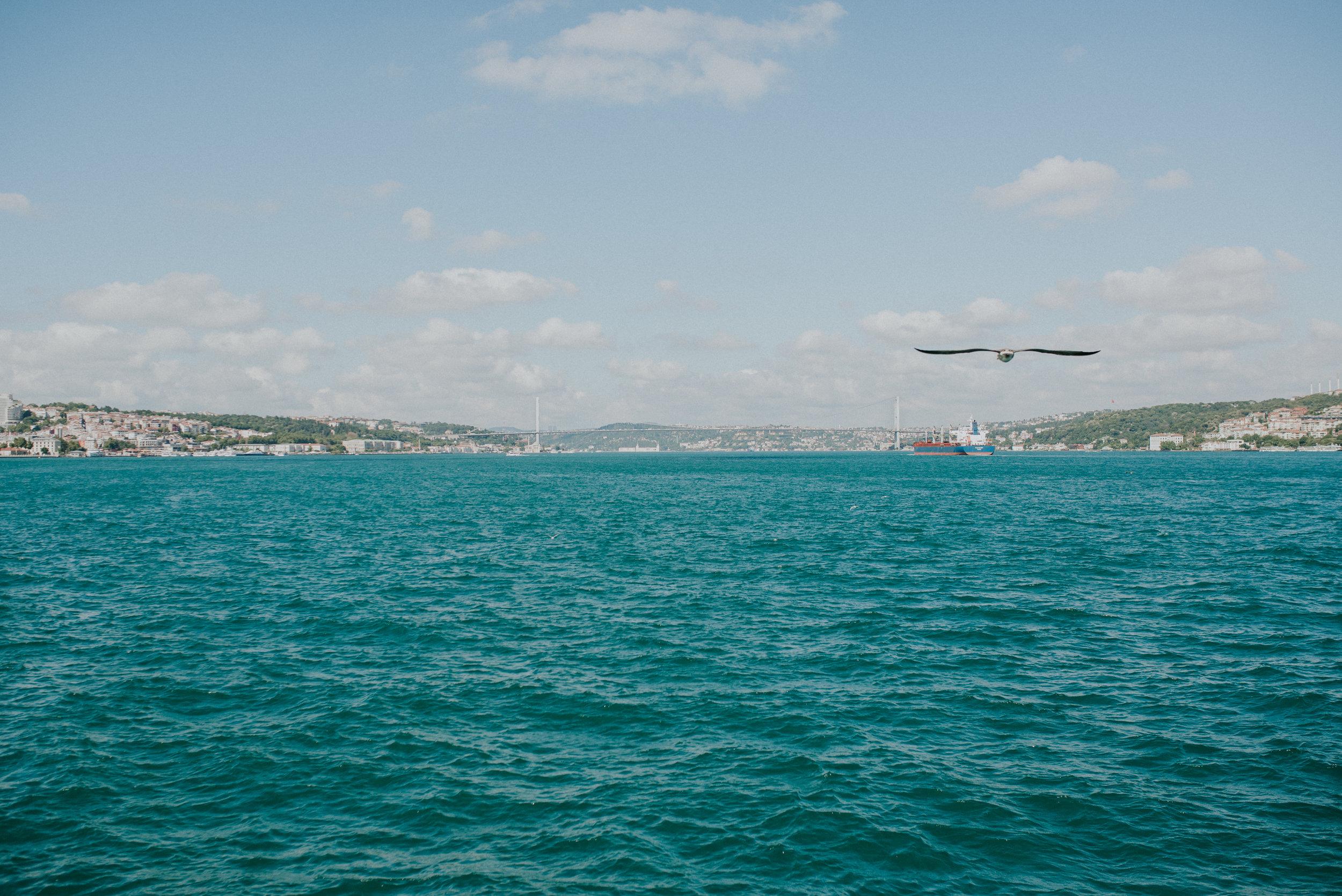 Istanbul-Rachel-Watters-Photo-93.jpg
