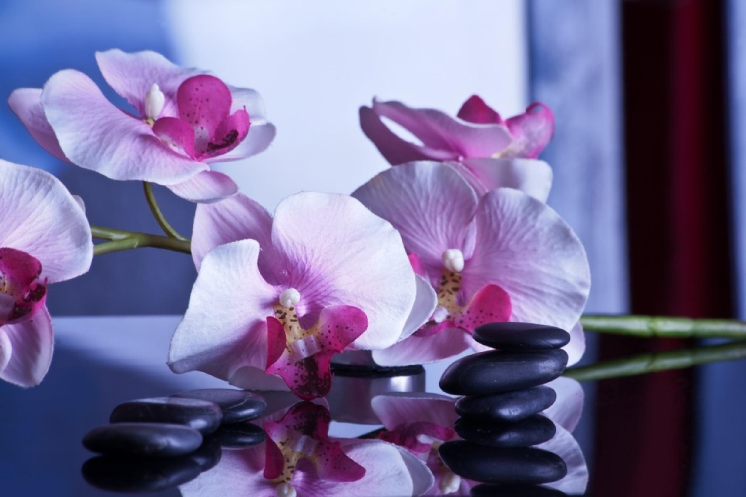 Massage -