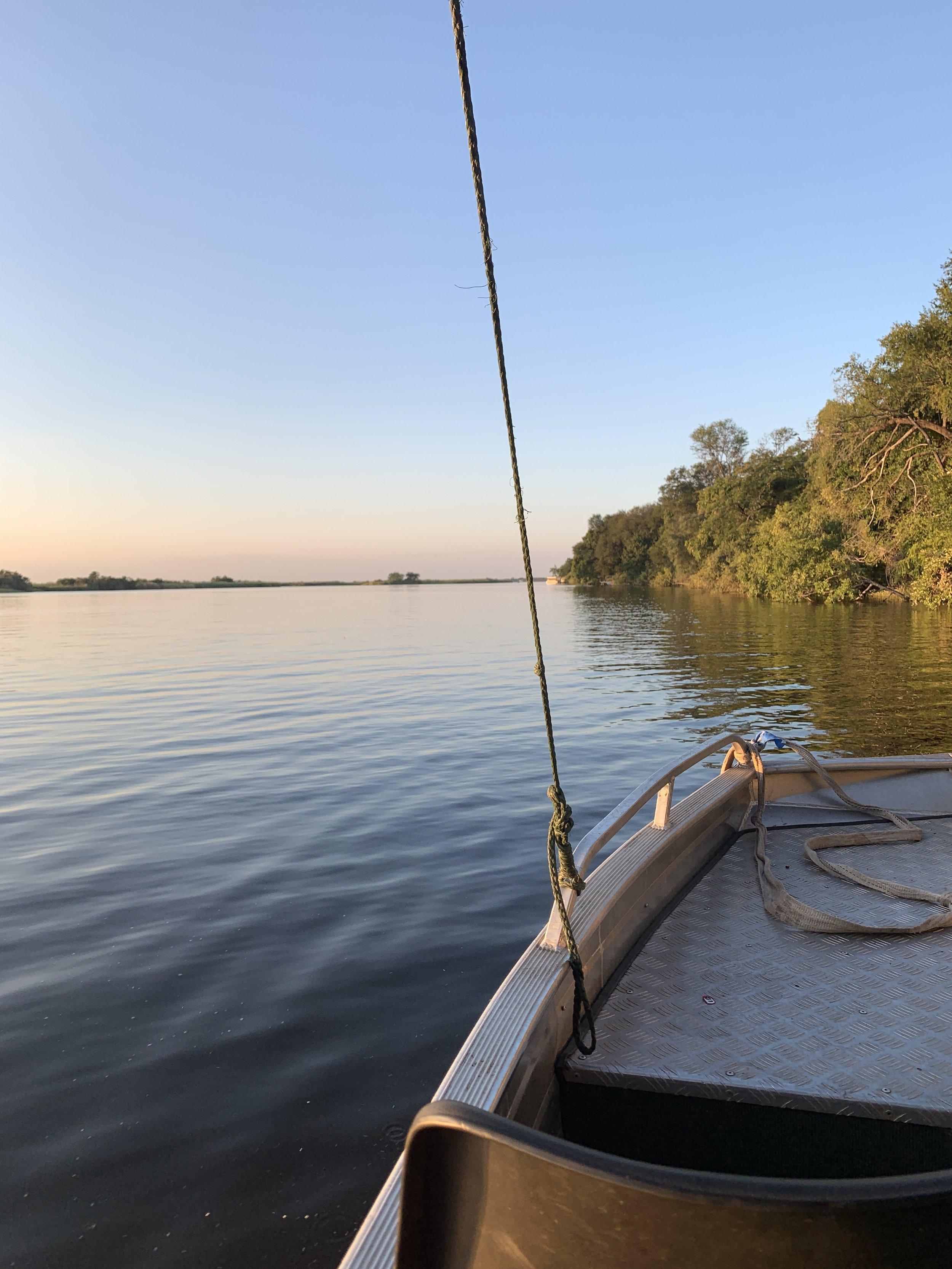 Located right on the Chobe River, you can pay for one of the lodge's boat tours to have a different perspective of hippos, crocodiles, elephants and more from the water.  While Fiona went on that tour, I happen to meet some cool people that invited me out to an island party! Saw hippos on the way.