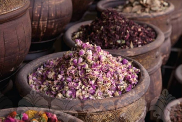 Beautifully aromatic rose petals are used to make the extremely valuable rose essential oil.
