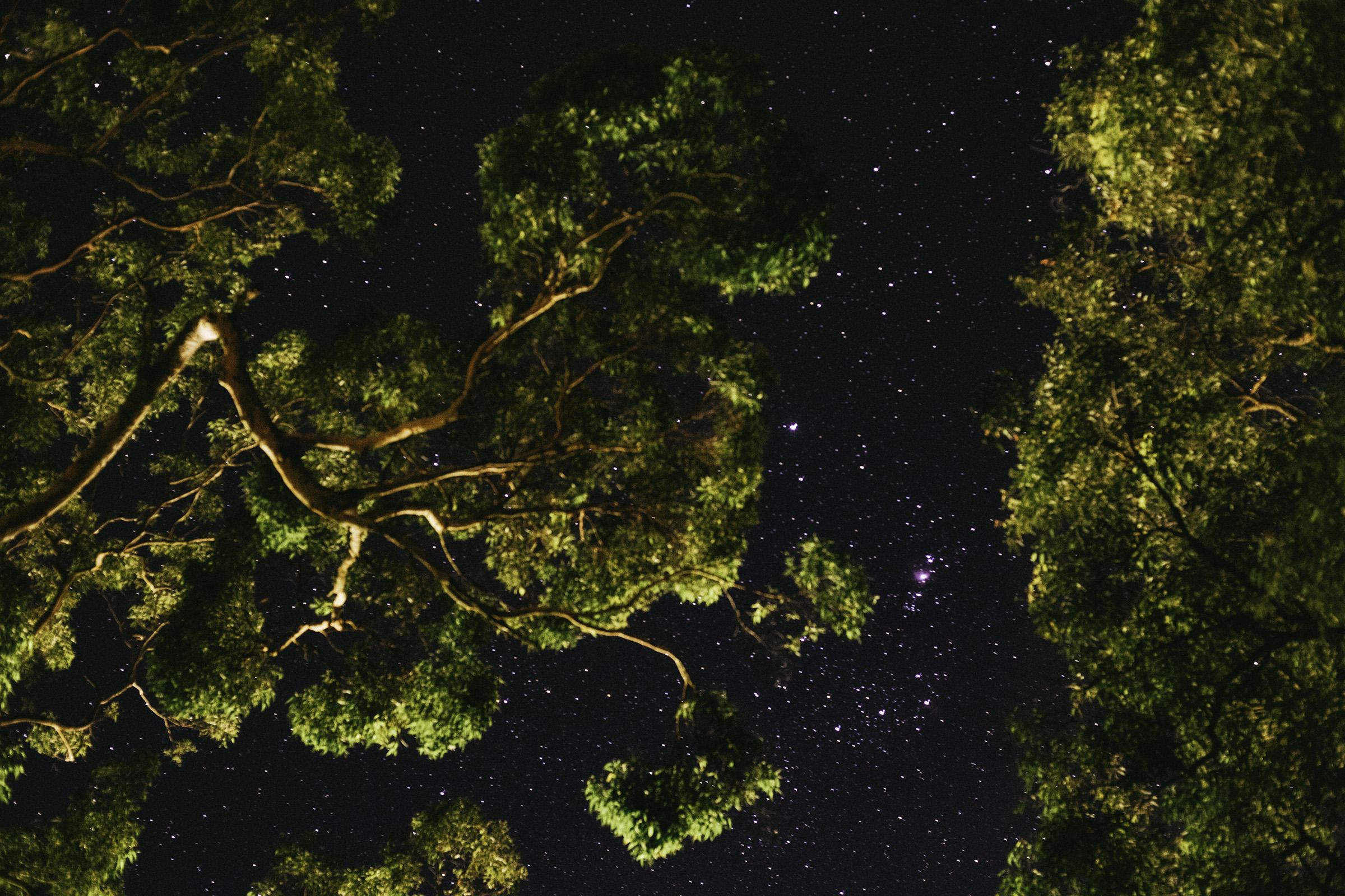 night sky 3.jpg