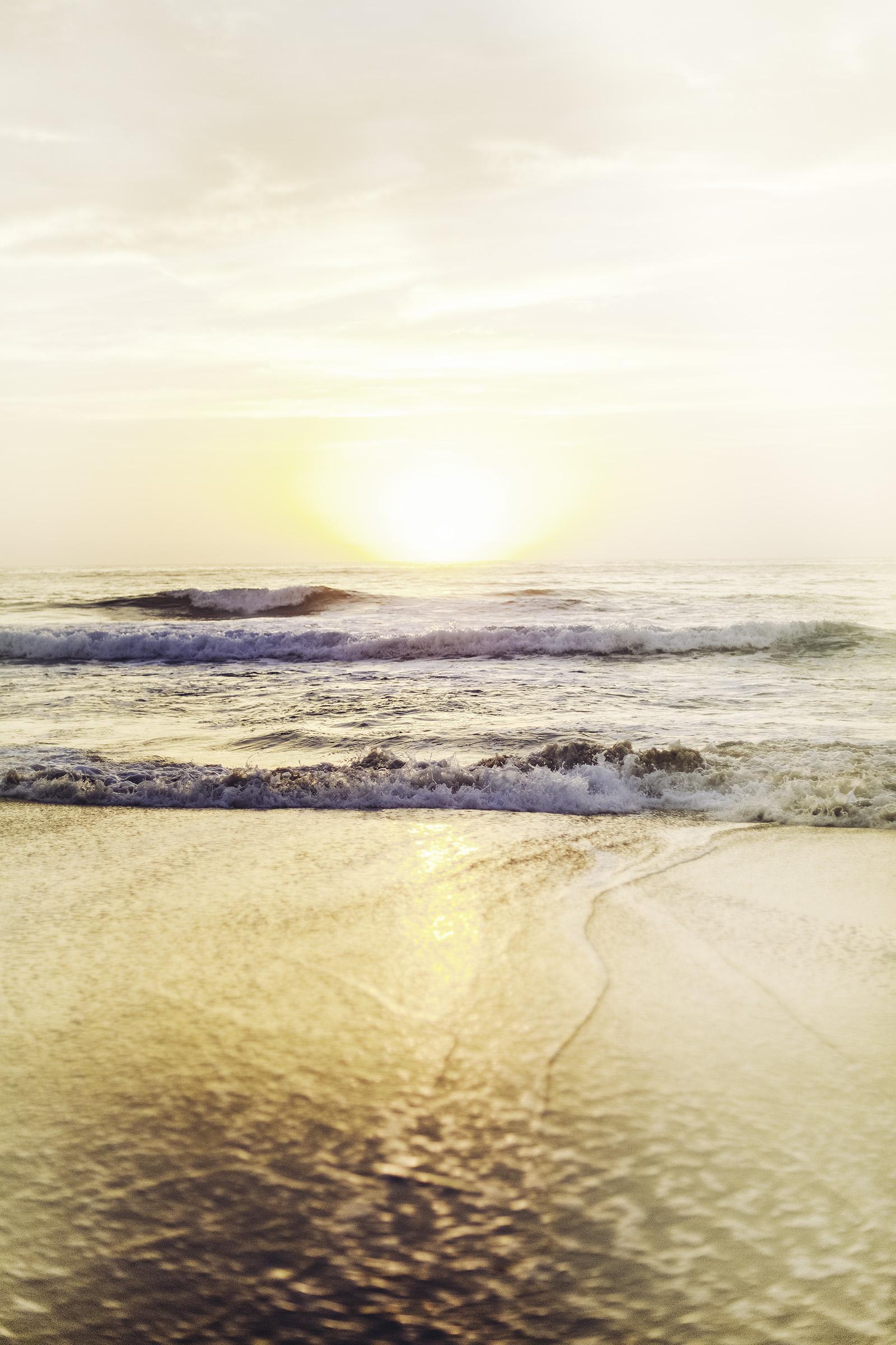 sunrise white 3.jpg