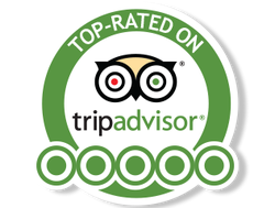 trip-advisor-5-star-rating.png