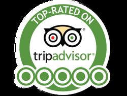 trip-advisor-5-star-rating.png