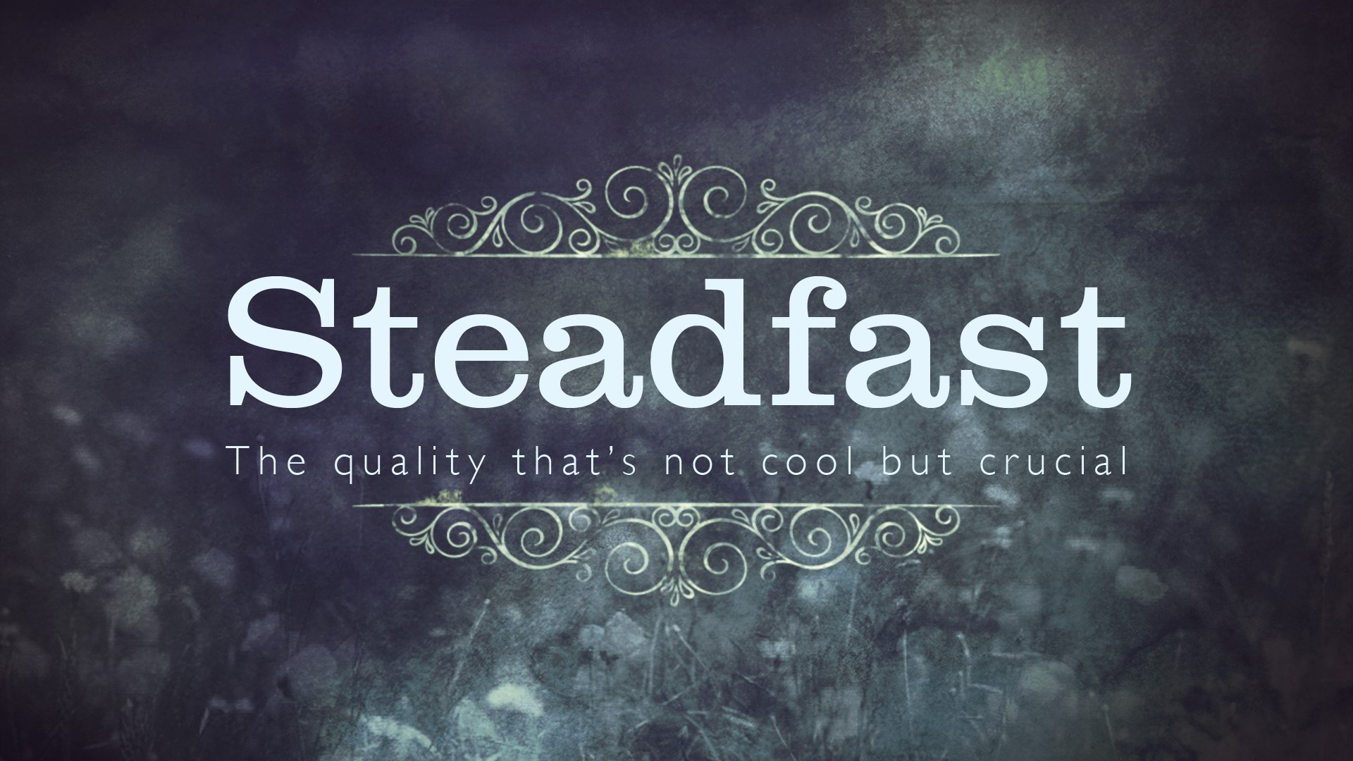 Steadfast - A series in James