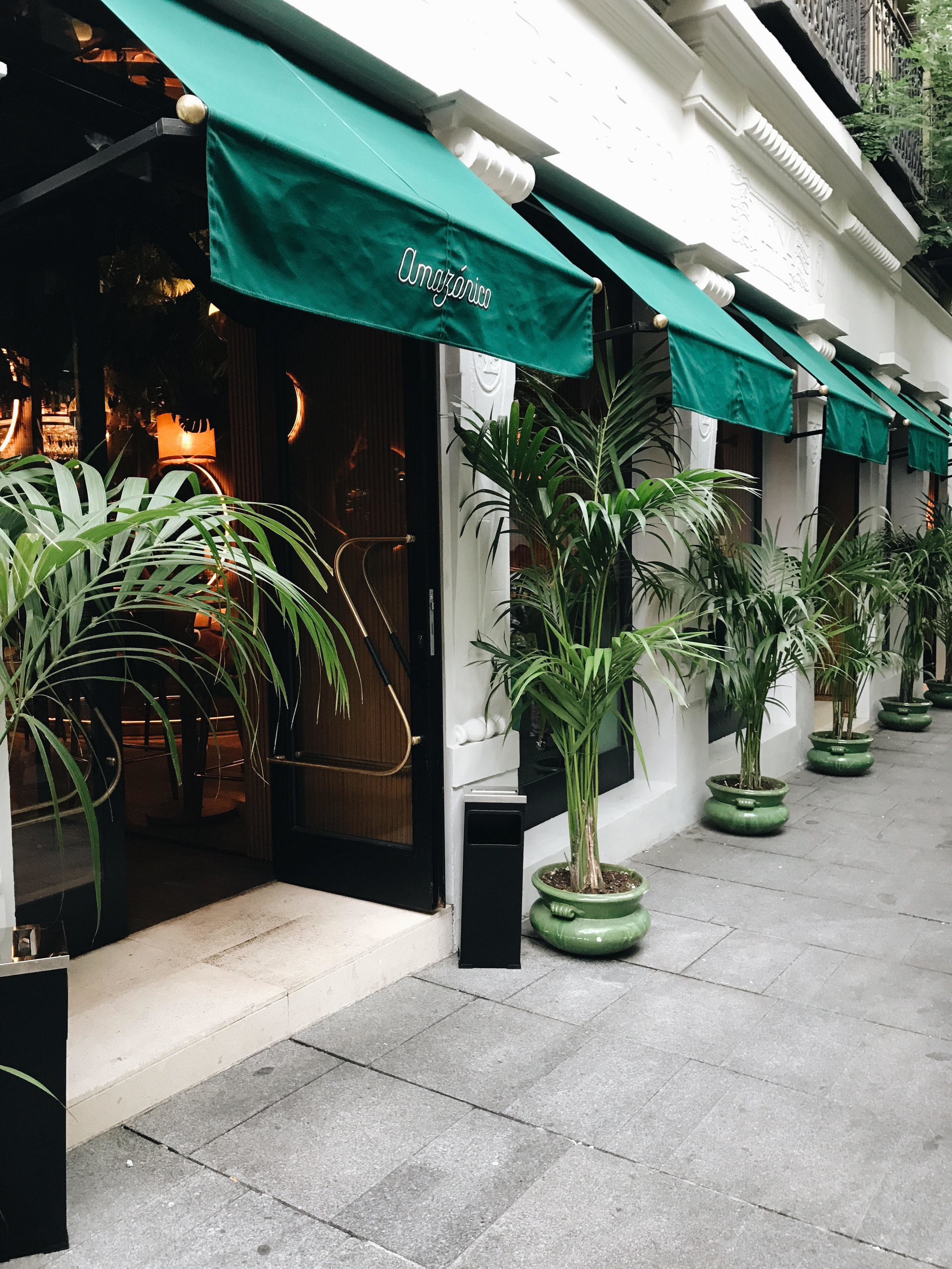 amazónico restaurante madrid opinion