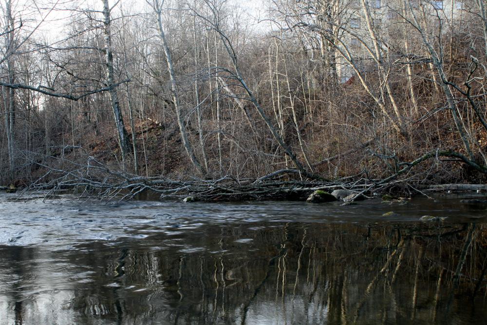 river-3.jpg