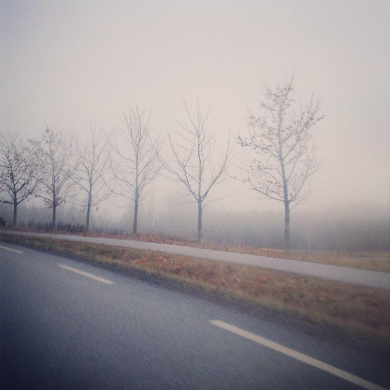 on-the-road-5.jpg