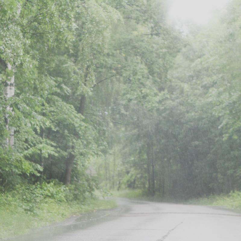 on-the-road-18.jpg
