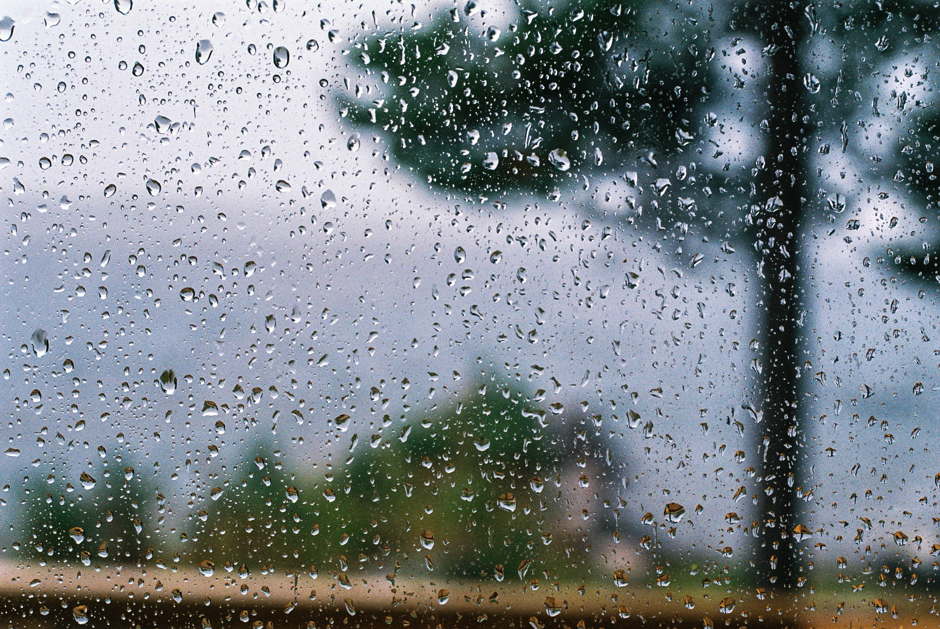 rainwindow.jpg