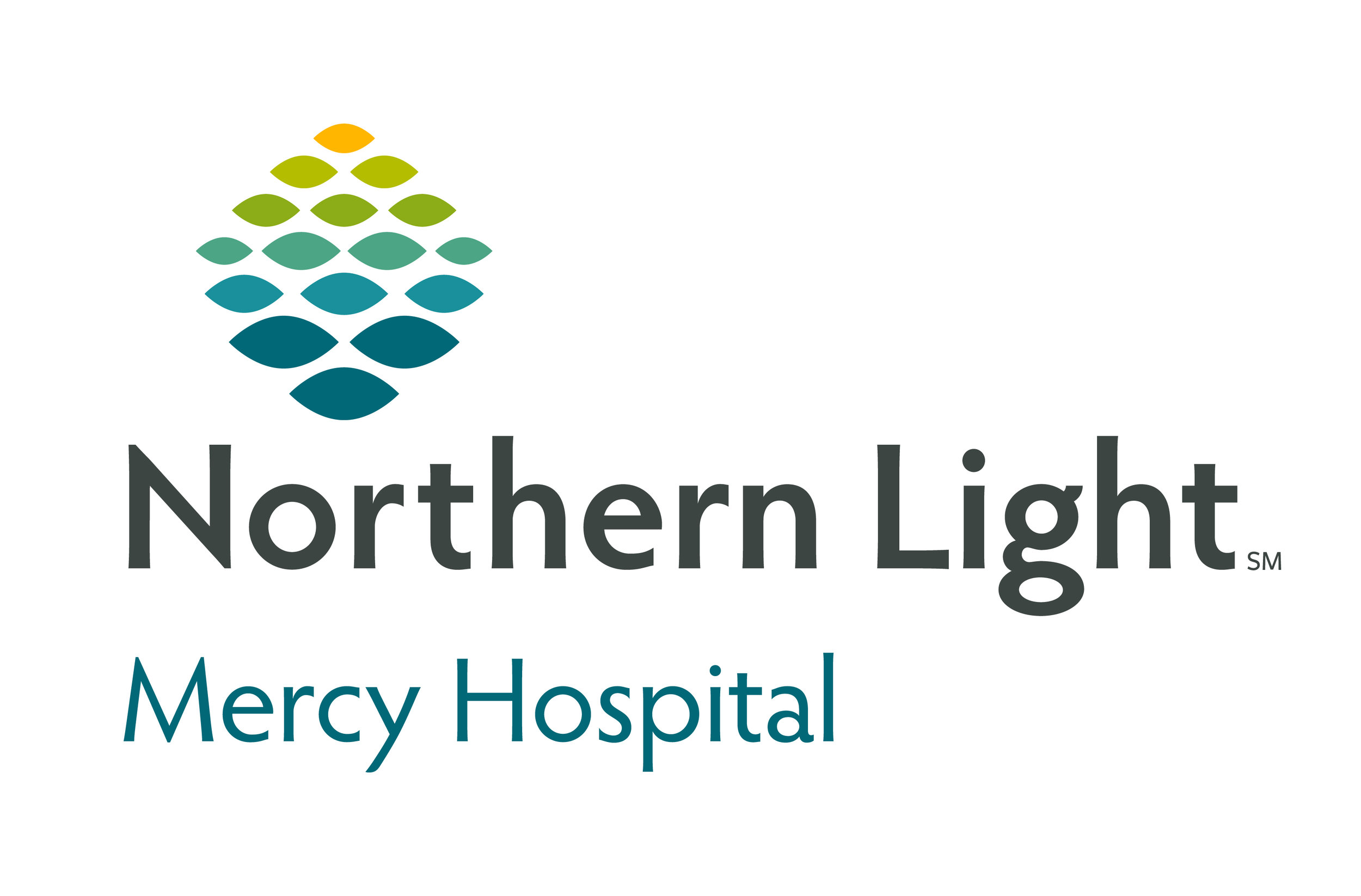 NL Mercy Hospital - logo - JPEG.jpg
