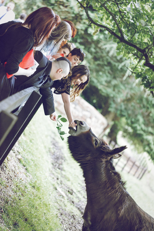 Wedding-photographer-wicklow-dublin_Ballybeg_106.jpg