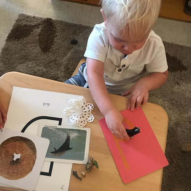 /d/ is for dog, dolphin, donut, doilies and duck. #montessori #sandpaperletters #anhmontessori